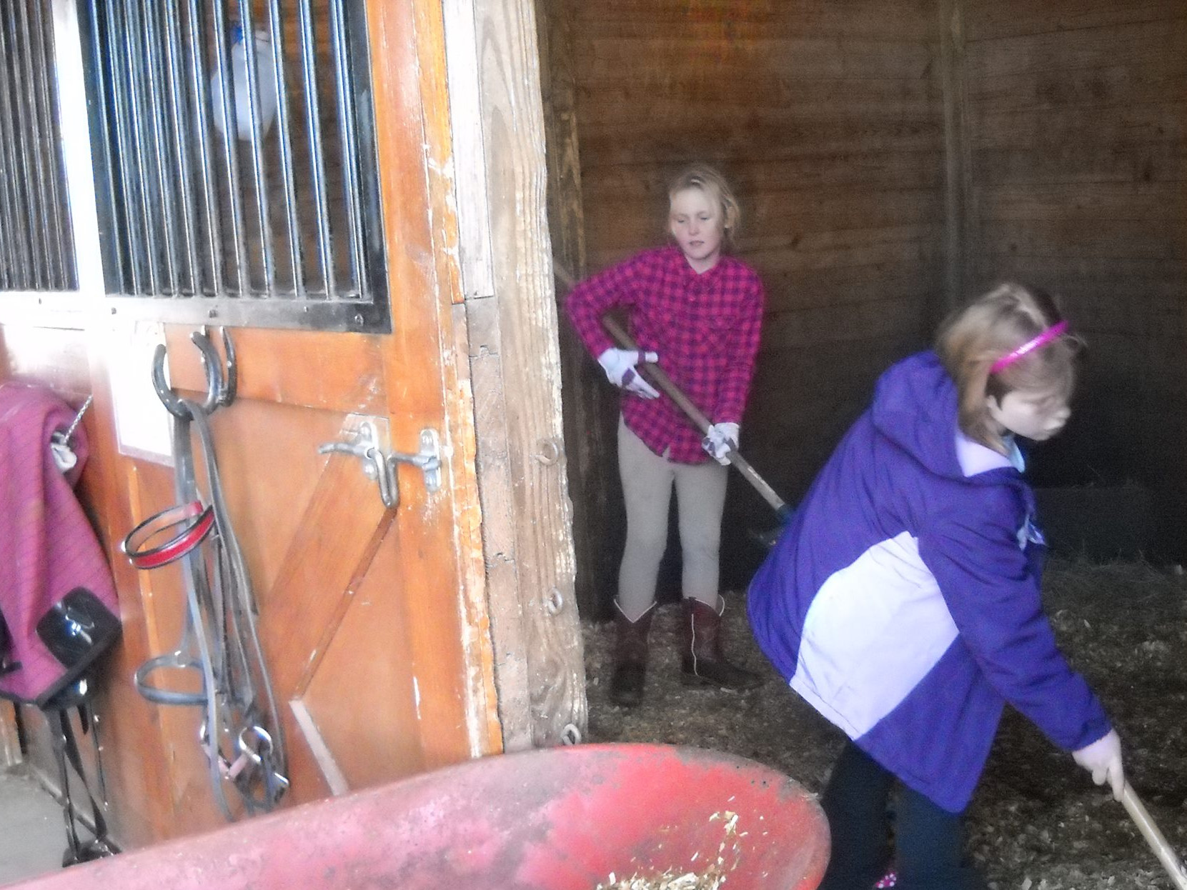girls_cleaning_stalls